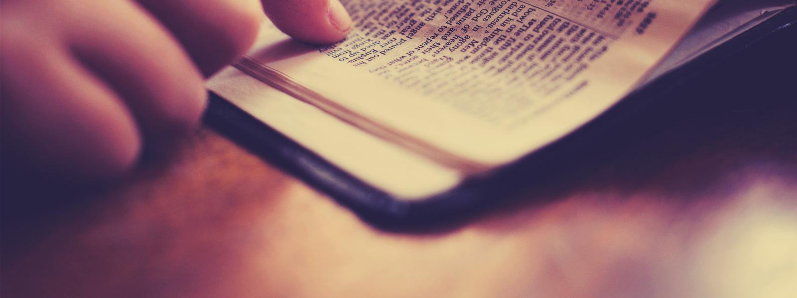 devoir obéissance fidélité